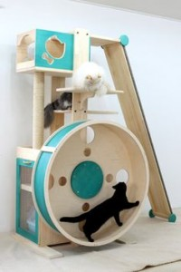 10 best ways to enrich your cat 39 s life for Diy cat tower cardboard
